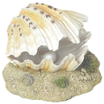 You may also like this Betta Air Action Clam Aquarium Ornament