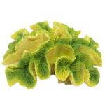 Betta Yellow / Green Ridge Coral MS234