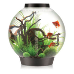 Biorb Baby 15ltr With Led Light Black Aquarium
