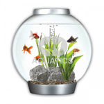 Biorb With Light 30ltr Silver Coldwater Aquarium