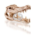 Crocodile Skull Aquarium Ornament