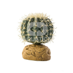Exo Terra Barrel Cactus Plant Medium