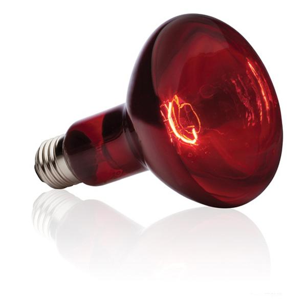 Exo Terra Heat Glo Inferred Heat Lamp 150watt Cd Aquatics