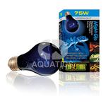 Exo Terra Night Glo Lamp 75 watt PT2130