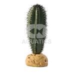 Exo Terra Saguaro Cactus Plant