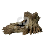 Fallen Oak Aquarium Ornament