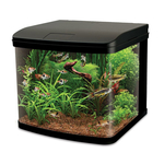 Interpet River Reef Led 94 Aquarium