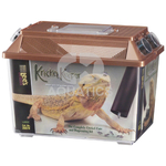 Komodo Kricket Keeper, Large
