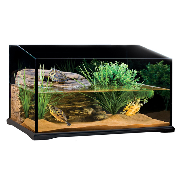 The Exo Terra Turtle Terrarium setup kit 1